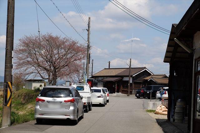 20160402_桜ツー (517)_R