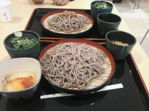 SA3D0004_yoshiso