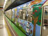 キャンバストレイン(8316-北側2)[2008年7月23日撮影 / 虎根さん提供]