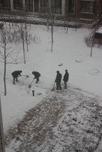 1日雪かき