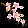 icon_2y_96