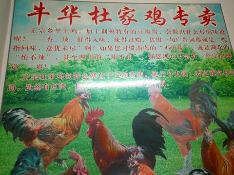 Wuhan-blog-10107