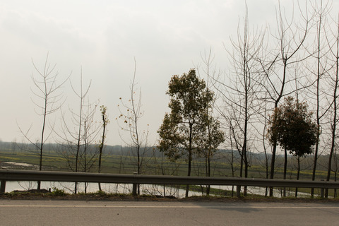 Wuhan-blog-1323
