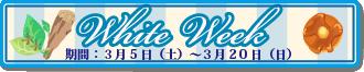 2016wdevb