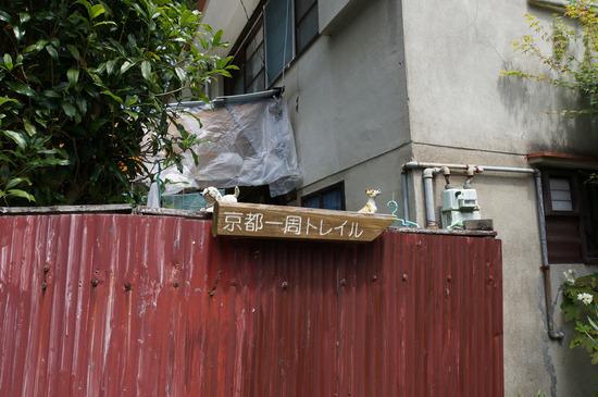 京都一周トレイル看板と犬