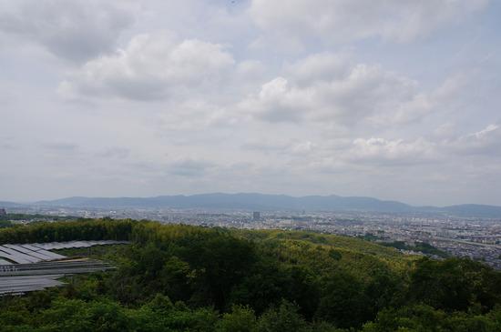 大岩山展望所からの眺め
