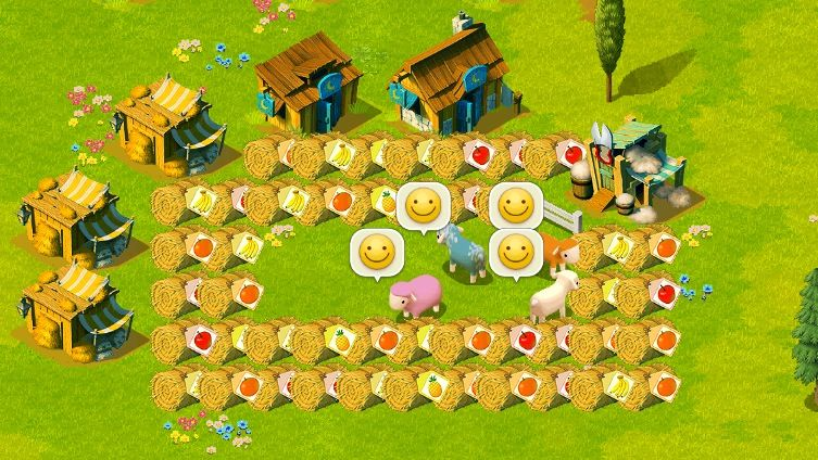 food fance1