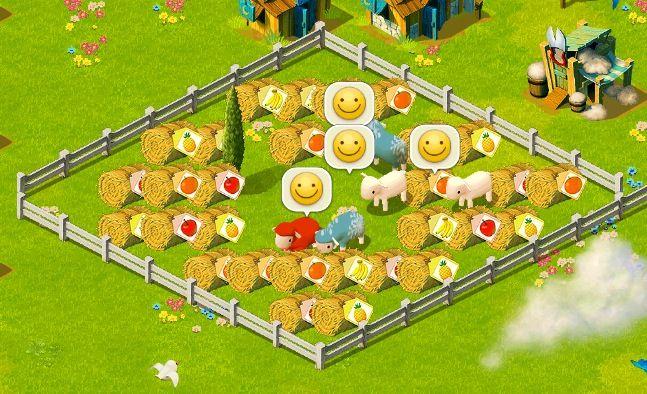 food fance2