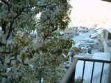 雪景色(ベランダ)