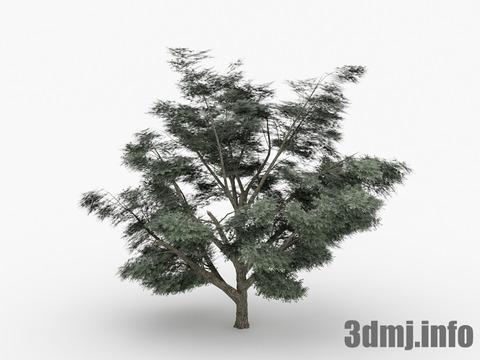 simpletree_003