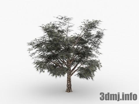 simpletree_002