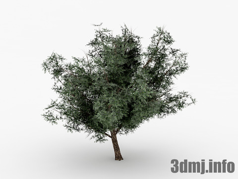 simpletree_001