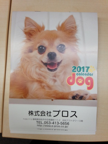 IMG_20161117_000052