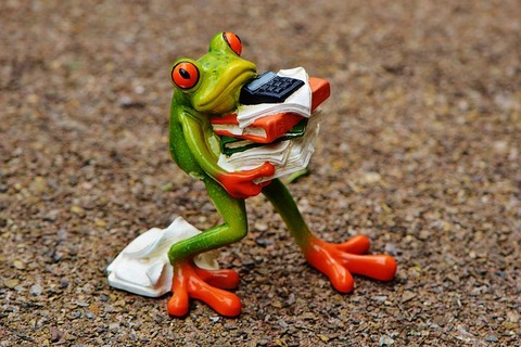 frog-1339892__480