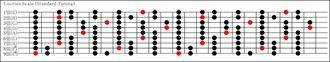 9弦ロクリアンスケール