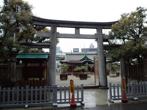 今宮戎神社。きれいな境内に楠が植えてある