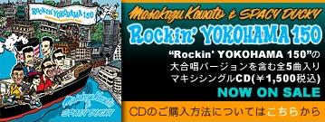 cd_banner