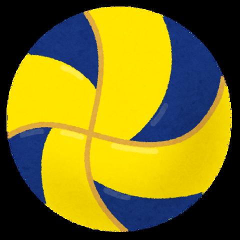 sports_ball_volleyball_blueyellow