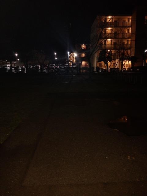 ヽ´ん 「最近深夜の公園にハマってる」