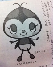 IMG_hotchi