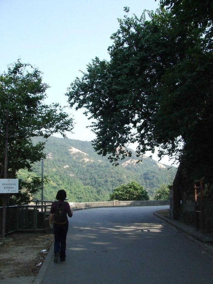 2010_12040346
