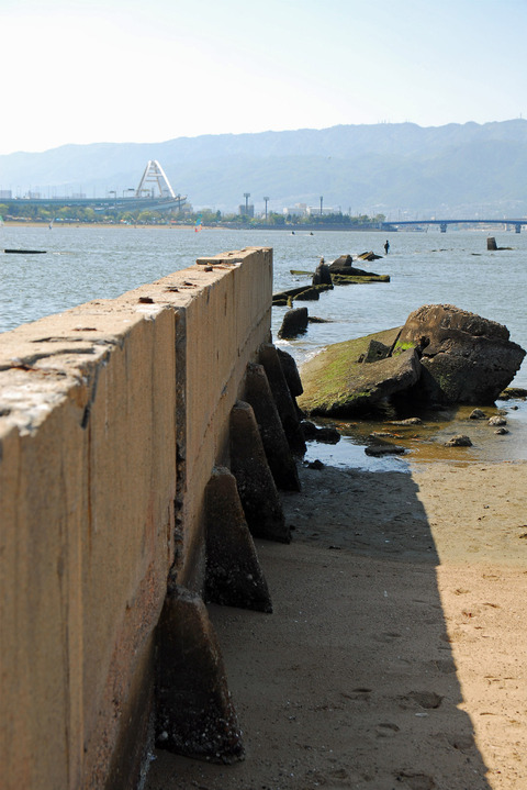 甲子園浜遺構 (6)