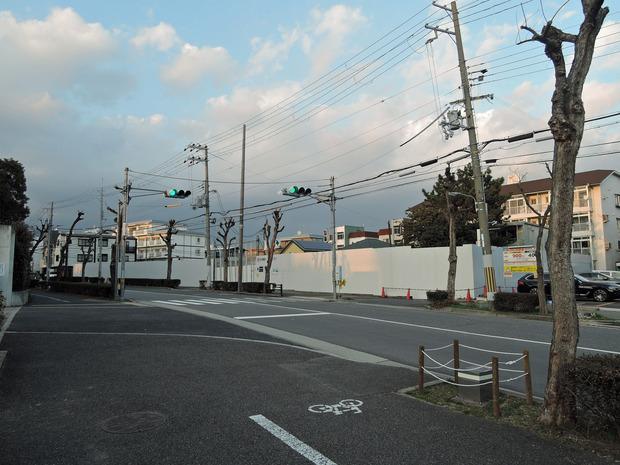 芦屋市立精道こども園 (1)