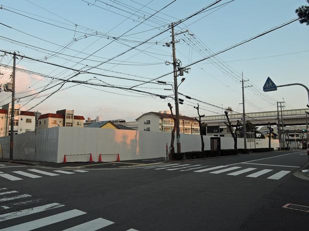 芦屋市立精道こども園 (8)