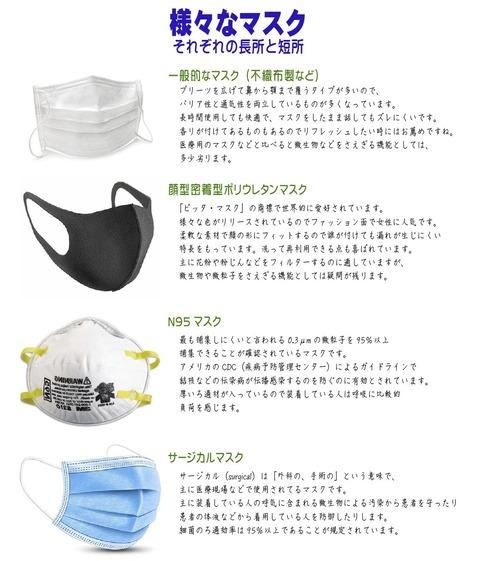 masks200305
