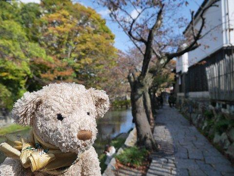 biwako_161106 (2)