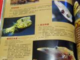 台湾の本3