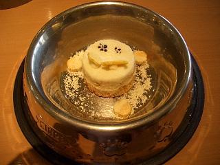 ミミ用チーズケーキ♪
