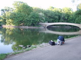 THE lake1