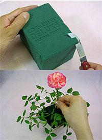 ぷにんぷ妊婦  *ブログで描く我が子の毎日*-サイト『花の資材屋さん』より