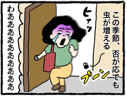 IMG_3596