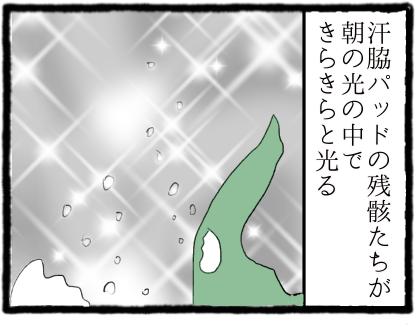 IMG_1557