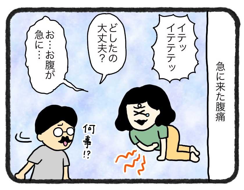 IMG_4241