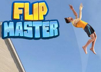 flip-master