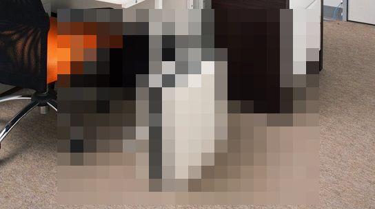 【完全に一致】アイリスオーヤマのシュレッダーが色々と「PS5」過ぎると話題にwww