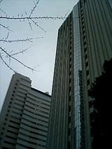 a8163c0a.jpg