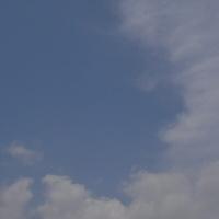 16579f08.JPG
