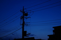 IMGP0110s_白熱灯