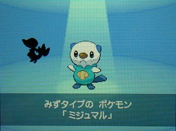 ポケモンBW2−006ミジュマル★