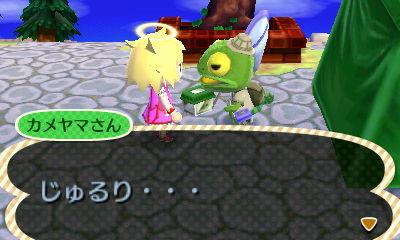HNI_0050カメヤマ★