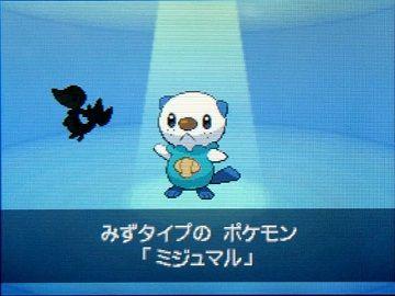 ポケモンBW007ミジュマル★