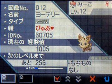 ポケモンBW012ヨーテリー★