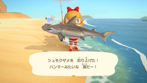 あつ森189サメ