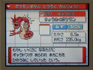 ポケモン金銀058赤ギャラドスGET★