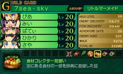 SQ4GCARDP1★