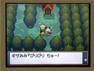 ポケモン金銀026ギザみみ3★